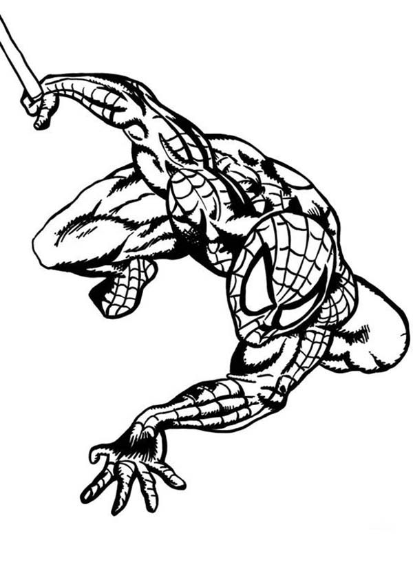 Spiderman, : Masked Hero Spiderman Coloring Page