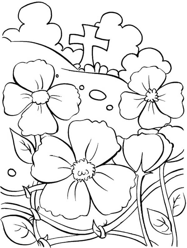 Remembrance Day, : November Remembrance Day Coloring Pages
