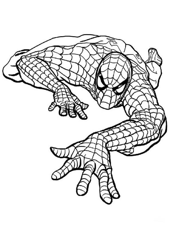 Picture of spiderman coloring page