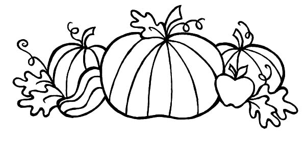 Harvests, : Pumpkins Fall Harvests Coloring Pages