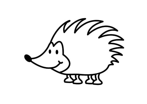 Hedgehog, : Smiling Hedgehog Coloring Pages
