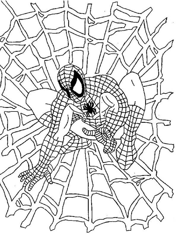 Spiderman, : Spiderman Stick to His Spider Webs Coloring Page