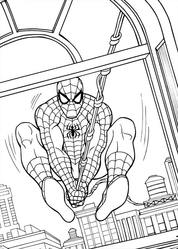 Spiderman, : Spiderman Swinging Through Window Coloring Page