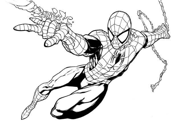 Spiderman, : Spiderman is Awesome Hero Coloring Page