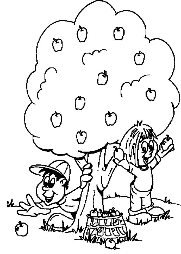 Two Kids Harvests Apple Tree Coloring Pages