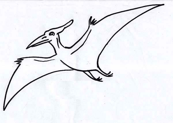 kids coloring pages pteranodon - photo#12