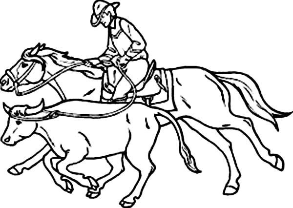 Cowboy, : An Expert Cowboy Catch Bull Coloring Page