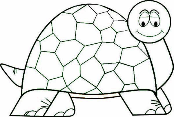 Turtle, : An Old Turtle Coloring Page