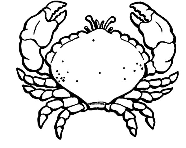 Crab, : Awesome Picture of Crab Coloring Page