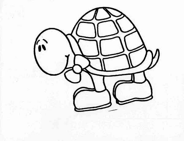 Turtle, : Baby Turtle Wearing Shoes Coloring Page