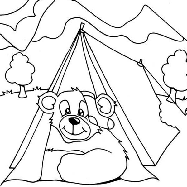 Camping, : Bear Get in Camping Tent Coloring Page