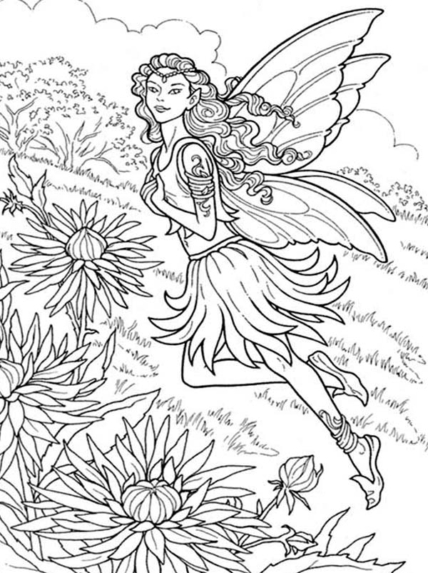 Chrysanthemum, : Beautiful Fairy of Chrysanthemum Coloring Page