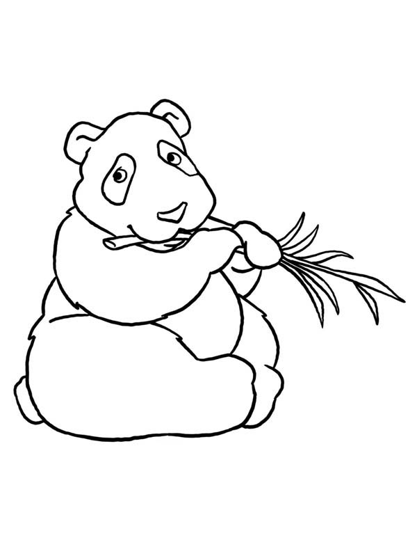 Panda, : Big Fat Panda Eat Bamboo Coloring Page