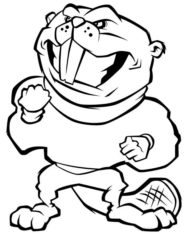 Beaver, : Big Teeth Beaver Coloring Page