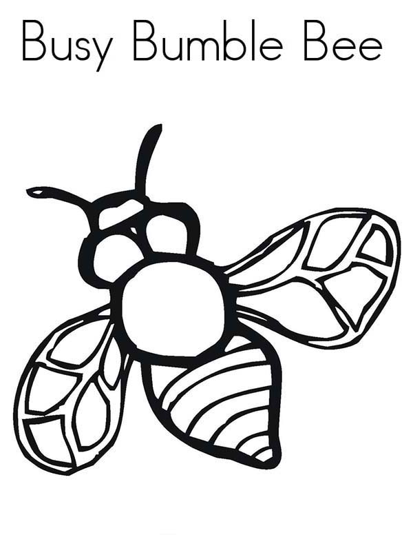 Bugs, : Busy Bumble Bee in Species of Bugs Coloring Page