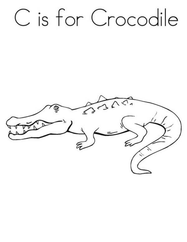 Crocodile, : C is for Crocodile Coloring Page