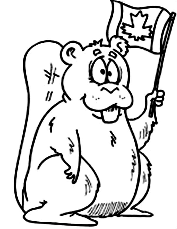 Beaver, : Canadian Beaver Coloring Page