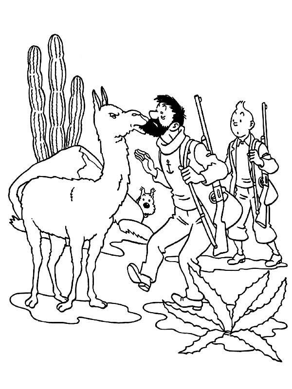 Tintin, : Captain Haddock Kissed by Illama in the Adventures of Tintin Coloring Page