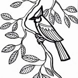 Cardinal Bird Perch On Tree Branch Coloring Page : Coloring Sun