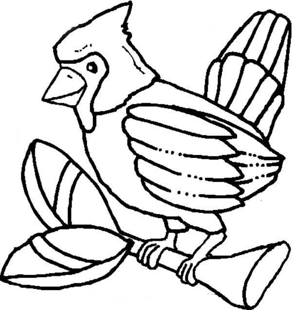 Cardinal Bird, : Cardinal Bird Perch on Tree Branch Coloring Page
