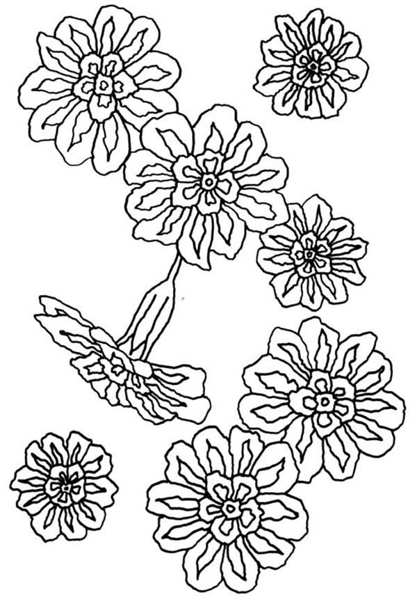 Carnation Flower, : Carnation Flower for Greek Ceremonial Crowns Coloring Page