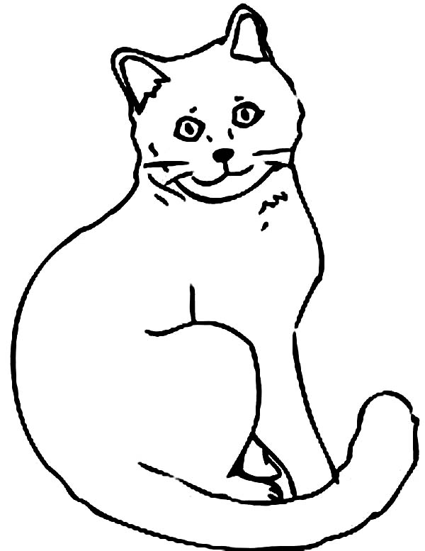 Cat, : Cat Coloring Page for Kids