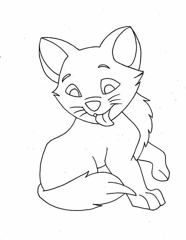 Cat, : Cat Licking His Body Coloring Page