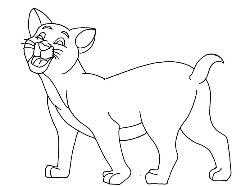 Cat, : Cat Miaow Calling for His Friend Coloring Page