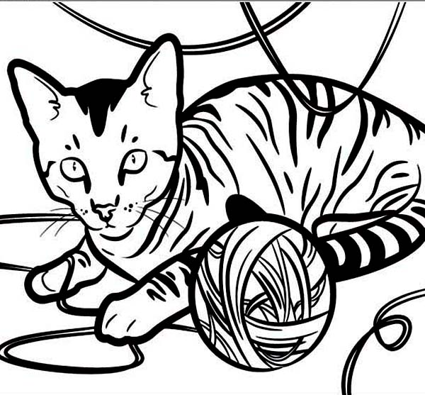 Petkin Cat Shopkin Coloring Page Printable Coloring Pages
