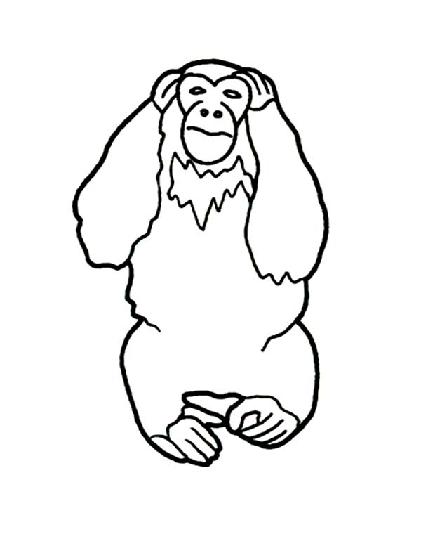 Chimpanzee, : Chimpanzee Cover His Ears Coloring Page