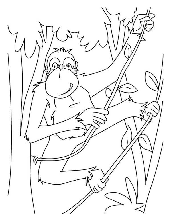Chimpanzee, : Chimpanzee Swinging Around with Tree Root Coloring Page