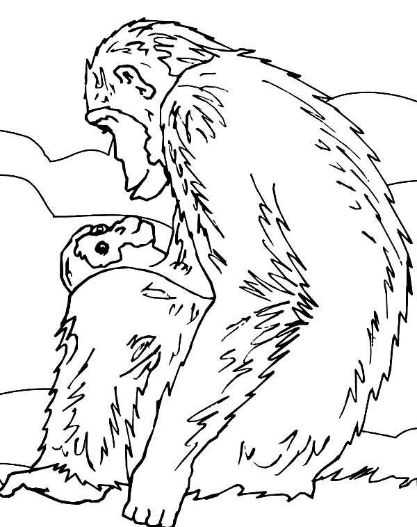 Chimpanzee, : Chimpanzee and Her Lovely Baby Chimpanzee Coloring Page
