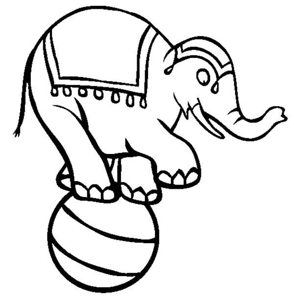 Circus, : Circus Elephant Show Standing on a Ball Coloring Page