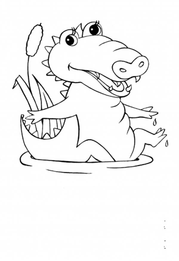 Crocodile, : Cute Baby Crocodile Coloring Page
