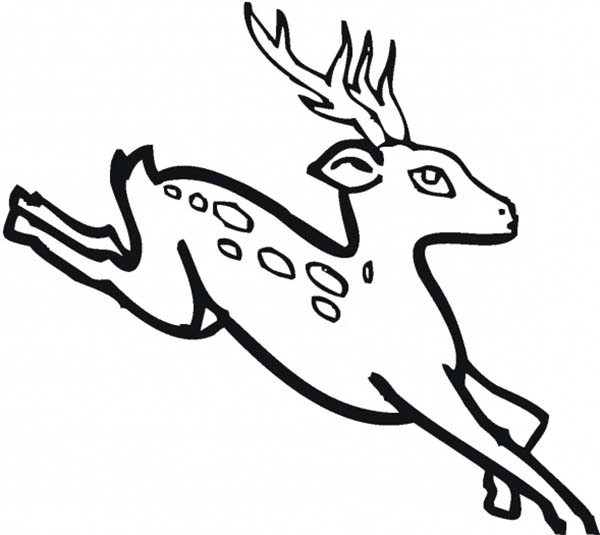 Deer, : Deer Fawn Running Fast Coloring Page