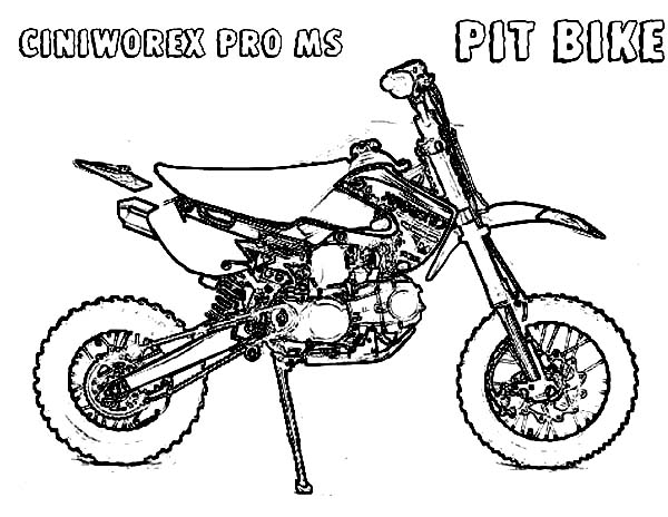 dirt bike ciniworex pit bike coloring page  dirt bike