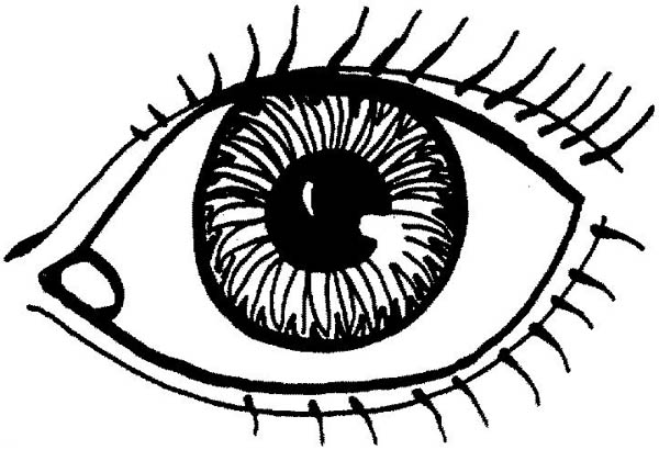 Eyes, : Drawing Lovely Eyes Coloring Page