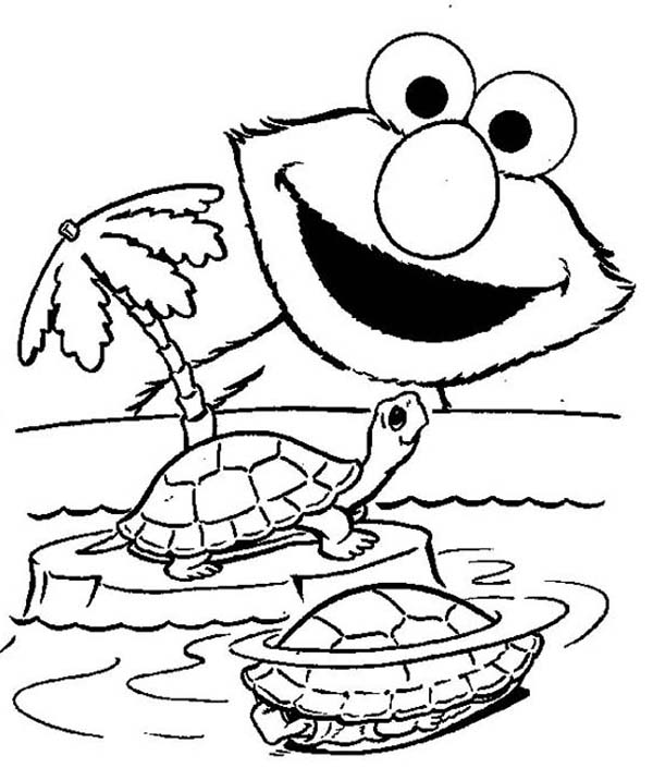 Turtle, : Elmo and Turtle Coloring Page