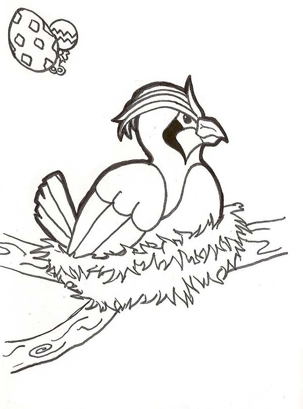 Articuno, : Female Articuno Incubate Her Egg Coloring Page