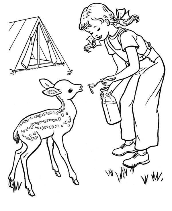Camping, : Little Girl Give Water to Thirsty Fawn When Camping Coloring Page