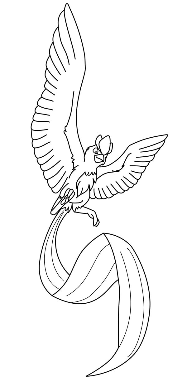 Articuno, : Long Tailed Articuno Coloring Page