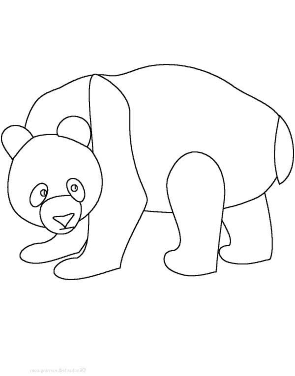 Panda, : Panda Outline Coloring Page