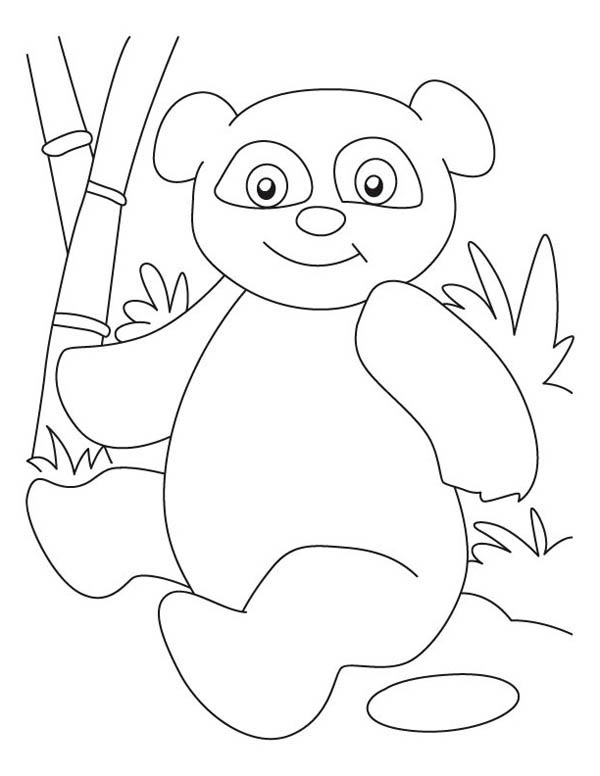 Panda, : Panda is Sitting on Ground Coloring Page