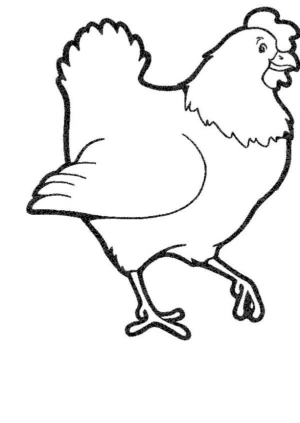 Chicken, : Picture Mother of Chicken Coloring Page