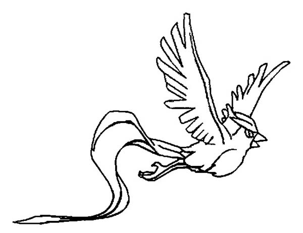 Articuno, : Picture of Flying Articuno Coloring Page