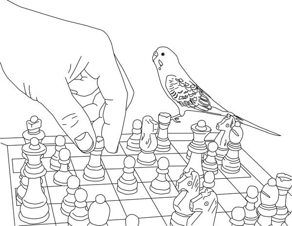 Parakeet, : Playing Chess with Parakeet Coloring Page