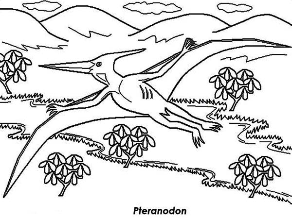 Pteranodon, : Pteranodon Fly Up on Mountain Coloring Page