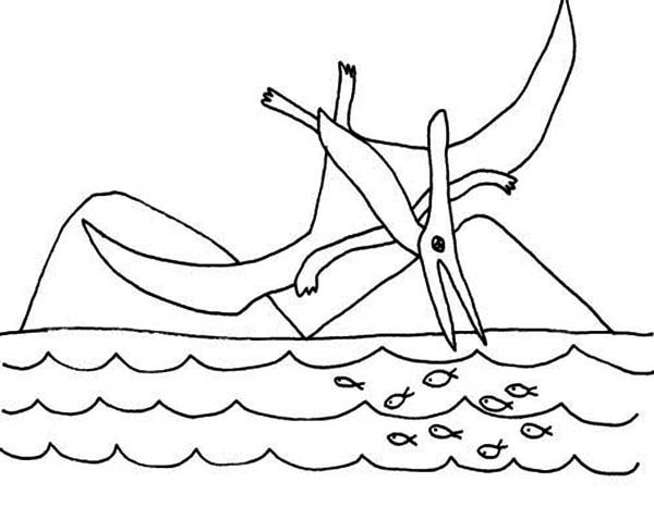Pteranodon, : Pteranodon Hunt for Fish Coloring Page
