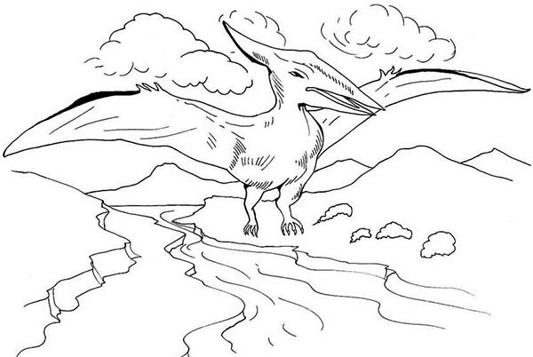 Pteranodon, : Pteranodon Looking for Fish Coloring Page