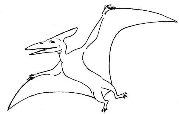 Pteranodon, : Pteranodon Spread His Wing Coloring Page